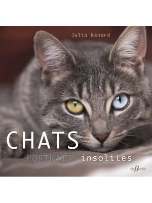 Chats, portraits insolites